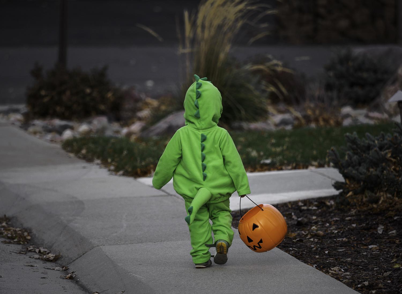 Neighborhood Dino