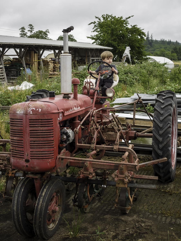 Finn River Farm & Cidery  - Chimacum, WA