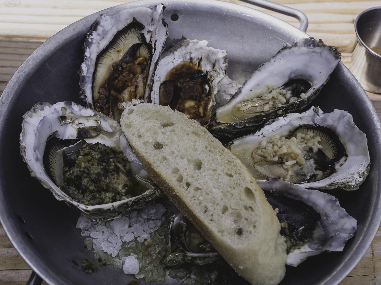 Hama Hama Oysters  - Lilliwaup, WA