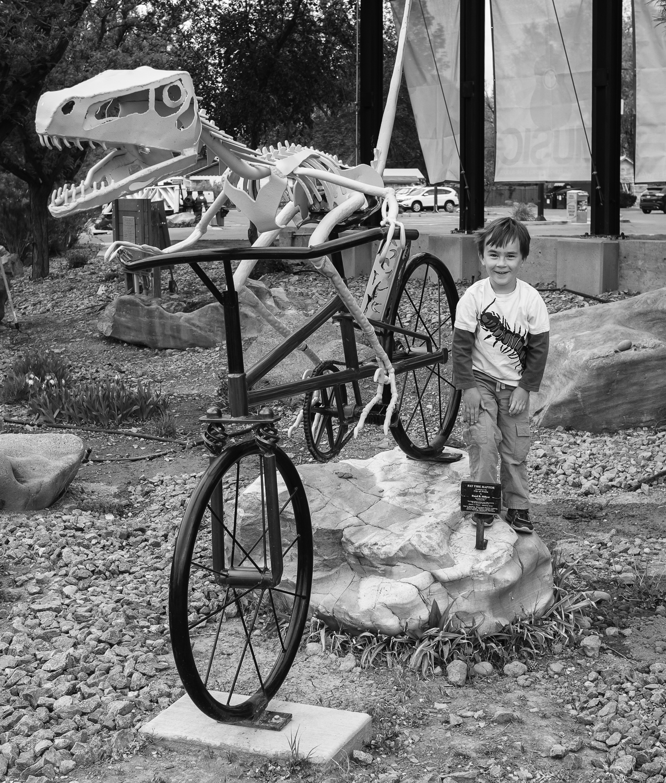 Dino's Ride Bikes - Fruita, CO