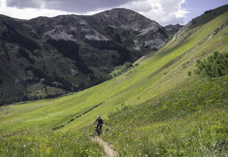 Alpine Vistas - Ben
