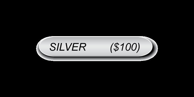 Silver Sponsorship (No check).png