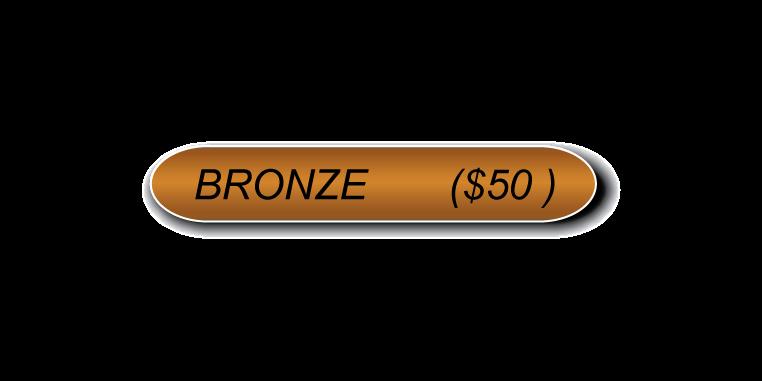 Bronze Sponsorship (No check).png