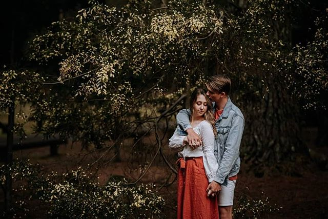 Found another wattle tree. . . . #wattletree #lovewattle #tasmaniaphotographer #launcestoncouplesphotographer #launcestonphotographer #couples #couplesinlove #discovertasmania #meghannmaguirephotography #instatas #lookslikefilm #dearphotographer #tribearchipelago #couplesession