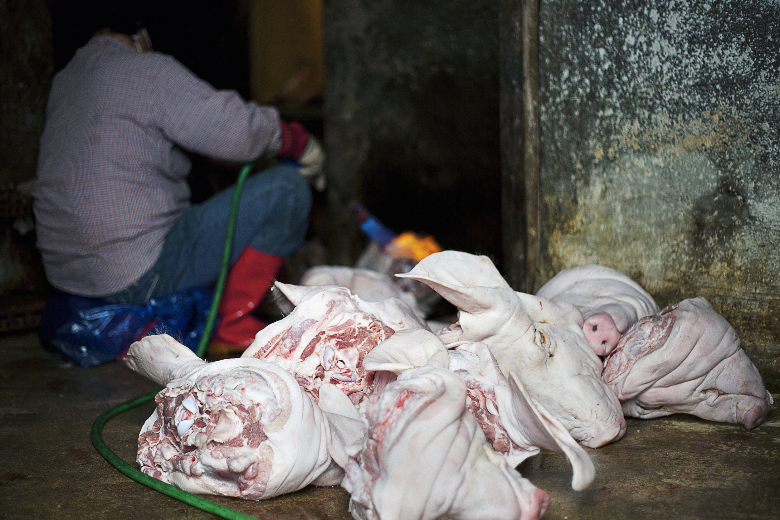 Woman Torching Pig Heads in Market