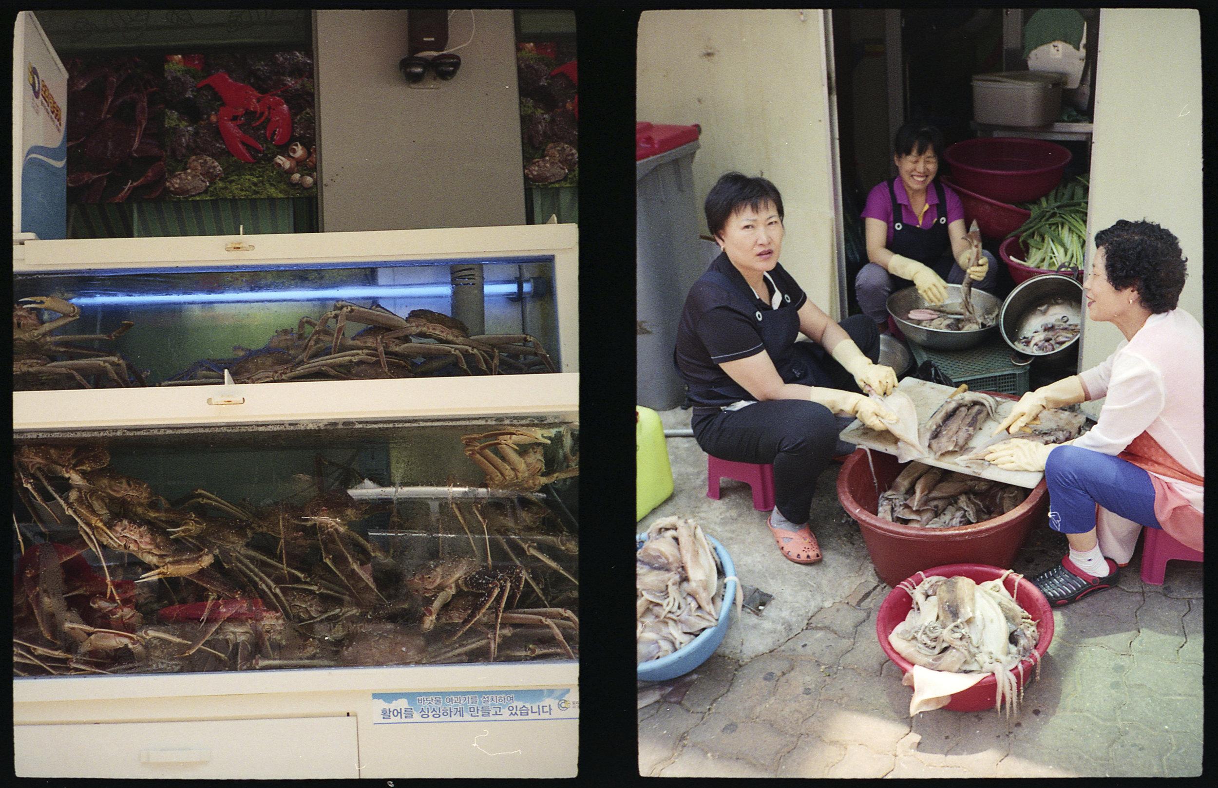 Crabs and Squid Preparation
