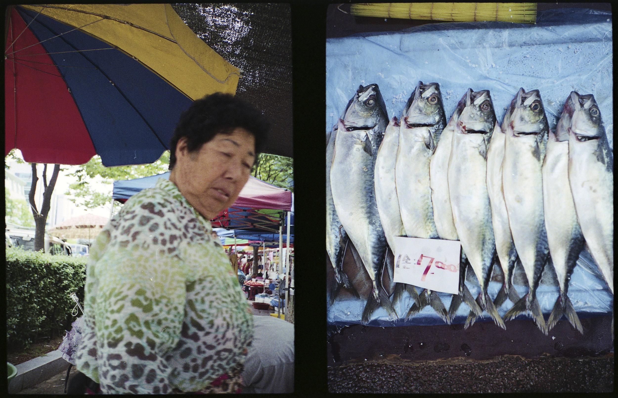Ajumma and Fish For Sale