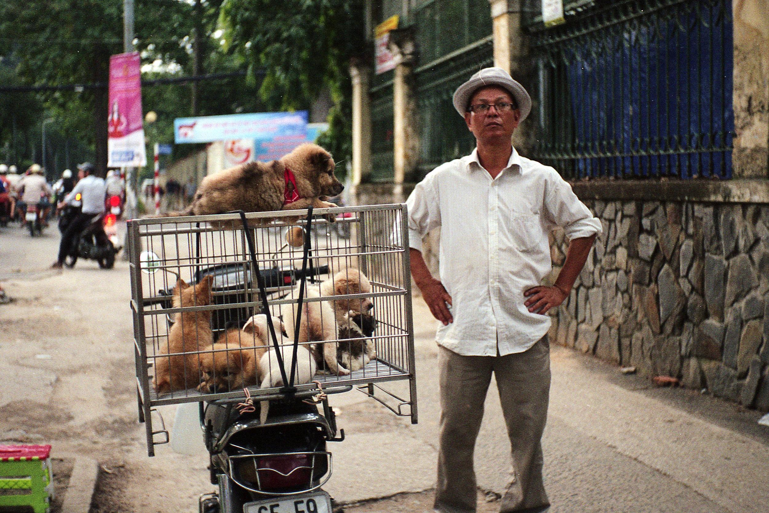 Saigon Pet Shop