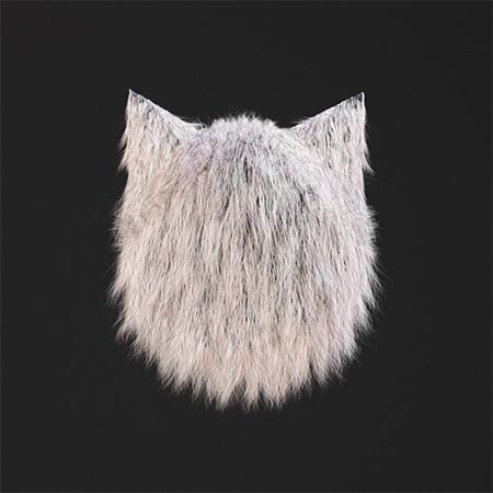 cheshire_cat_04.jpg