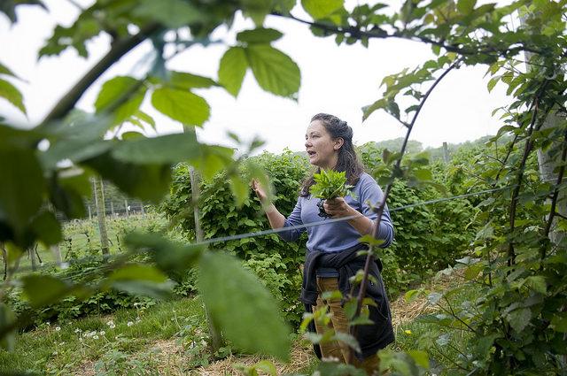 Crop Management Instructor Lise Lorimer
