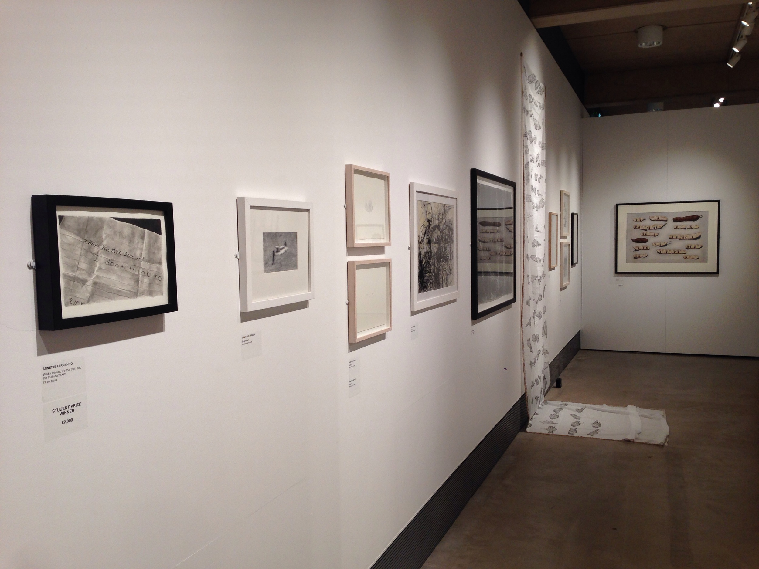 Exhibition view of the Jerwood Drawing Prize