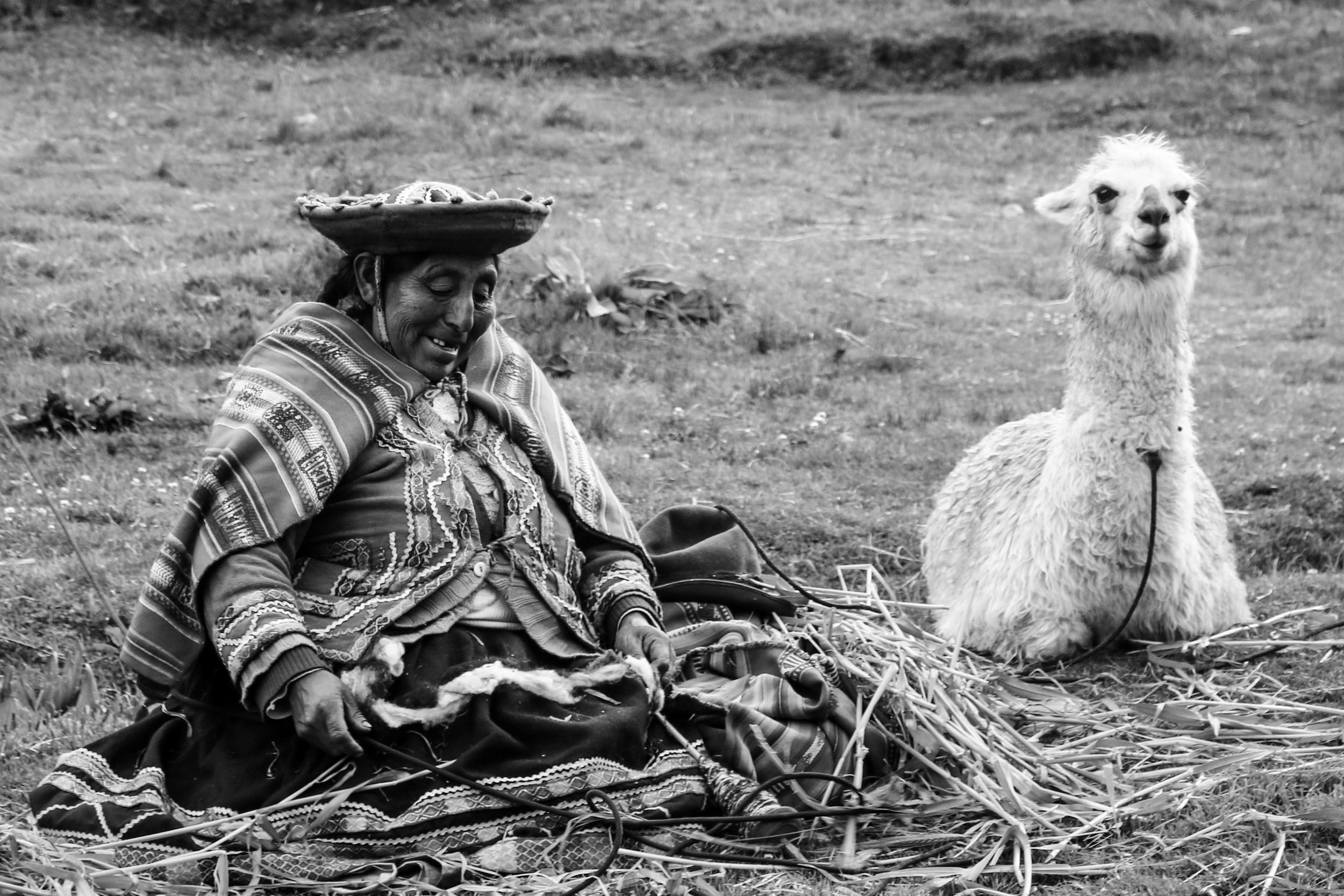 Local Woman and Alpaca in the Sacred Valley, Peru