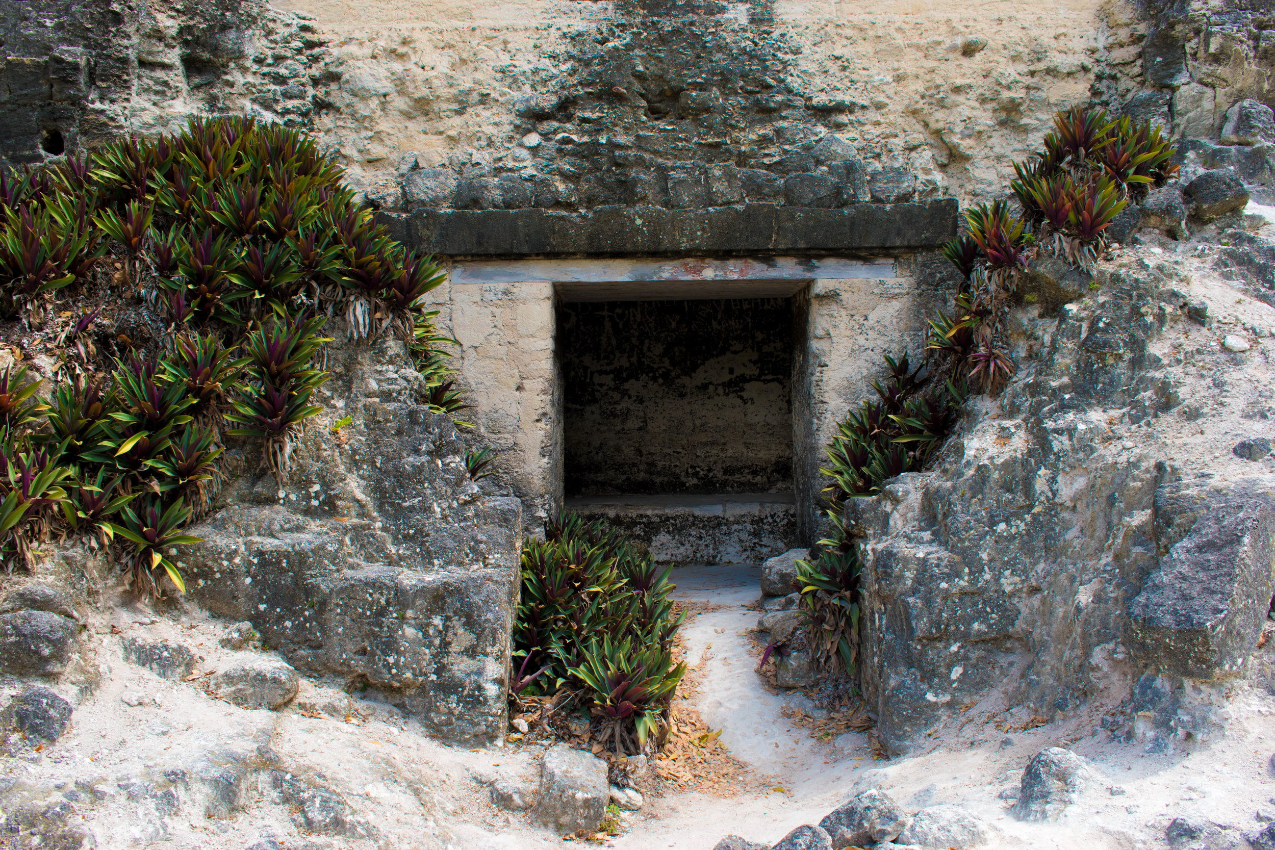 Hidden Spaces in Tikal, Guatemala