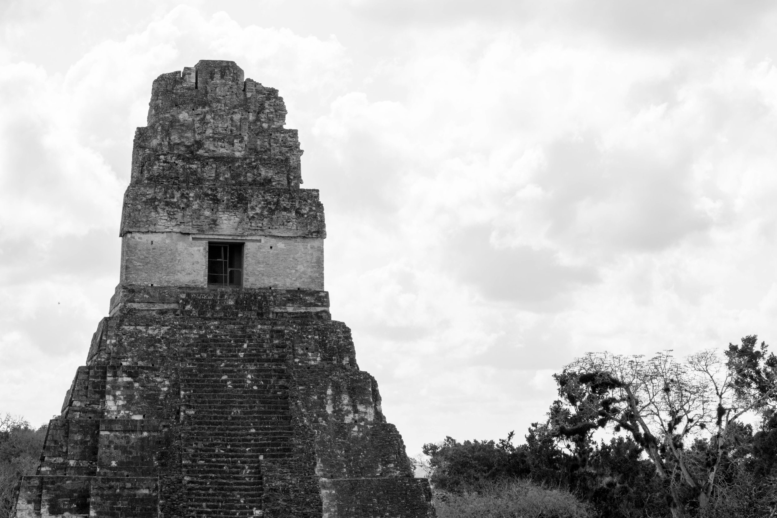 A Temple Visible Above the Jungle in Tikal, Guatemala