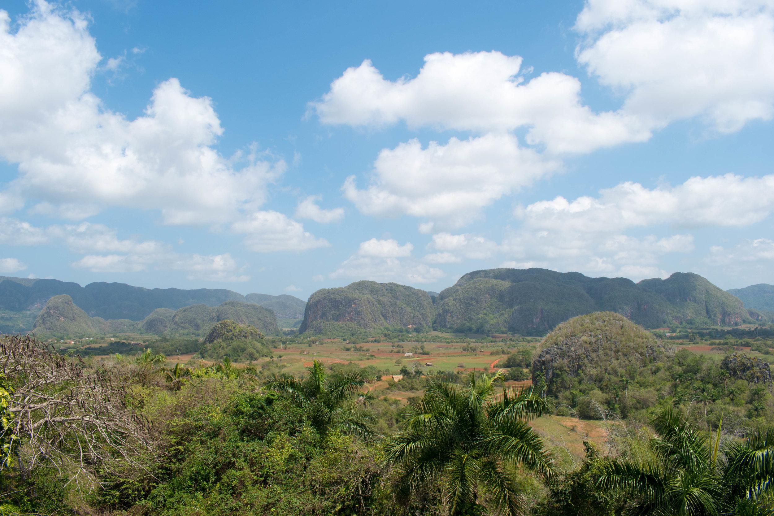Beautiful Green Landscape in Viñales in Cuba