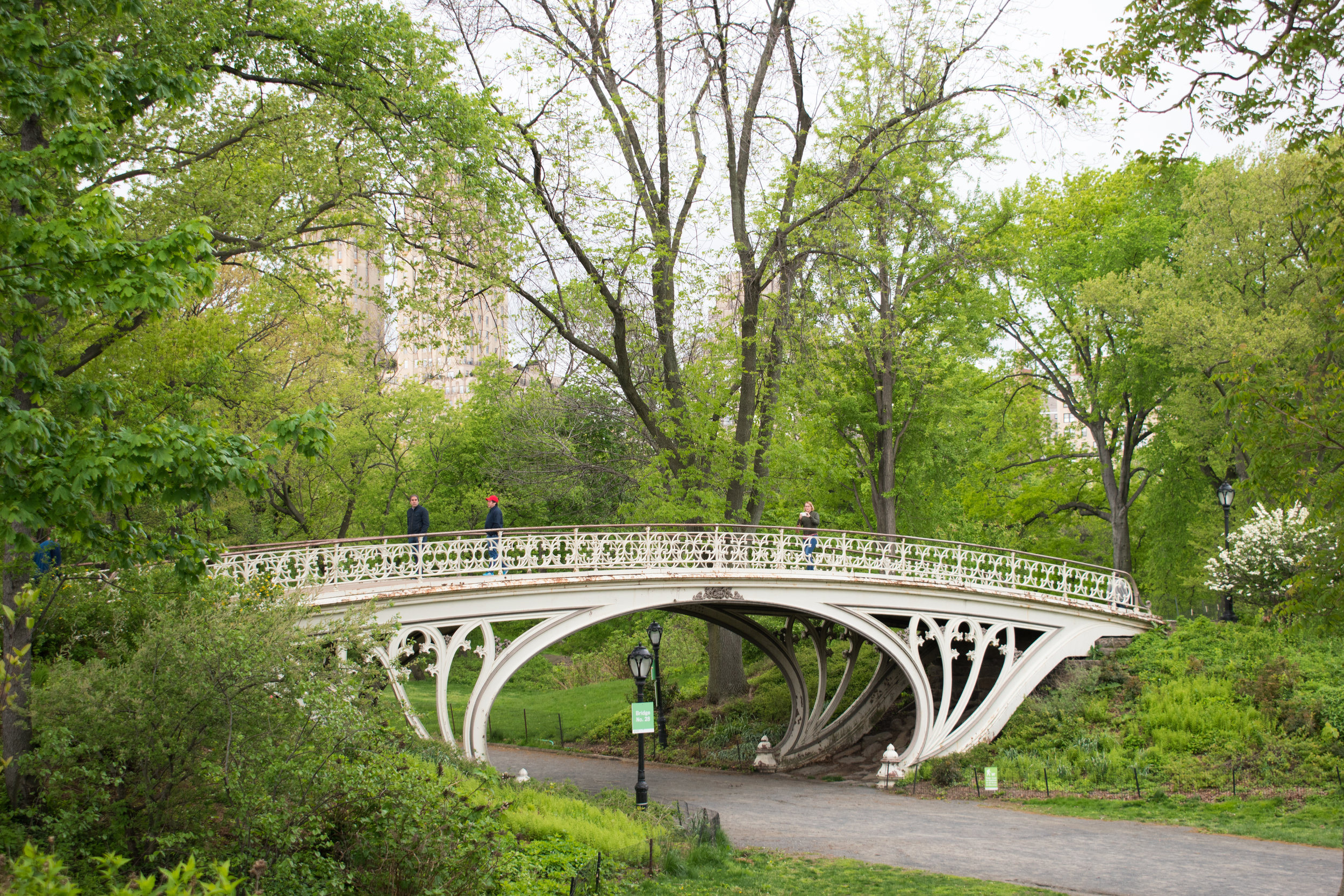 A Bridge in Central Park, New York