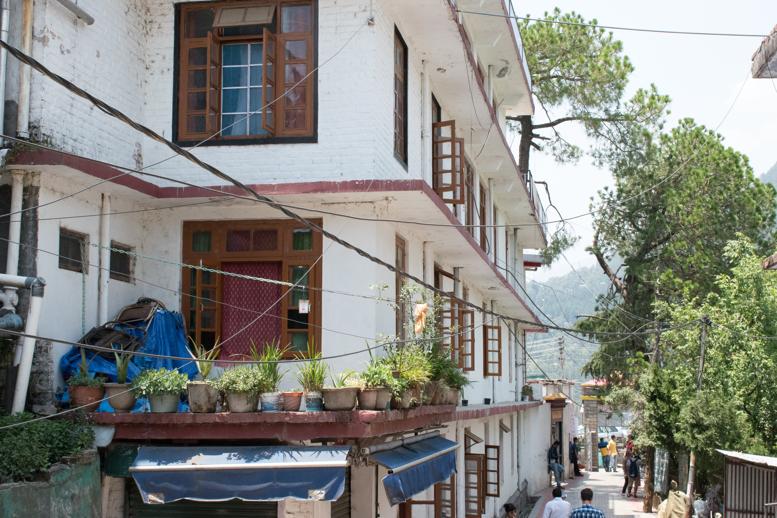 A Street Scene In Mcleod Ganj, India
