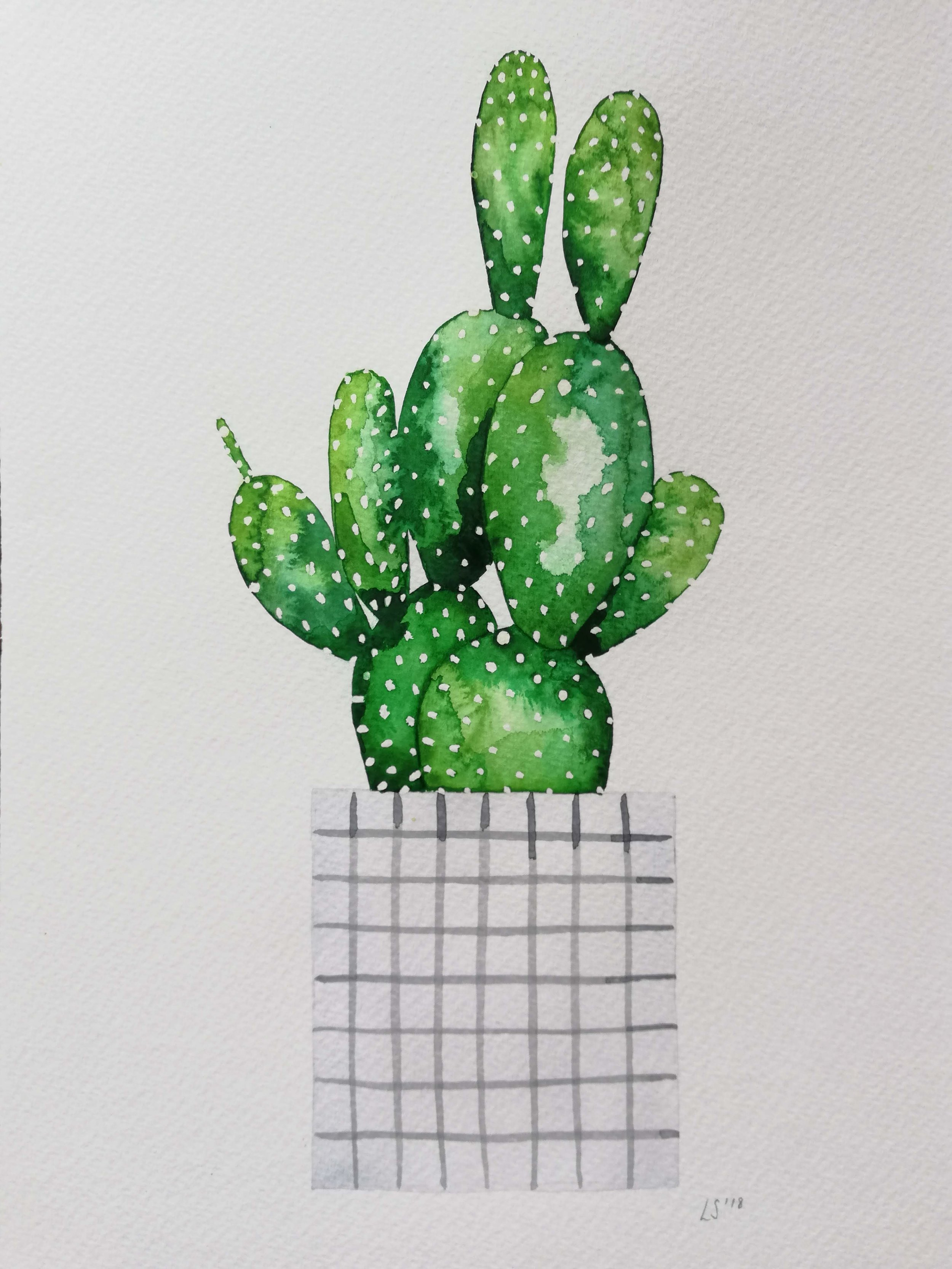 Recent Botanical Inspired Work by Lucy Springall