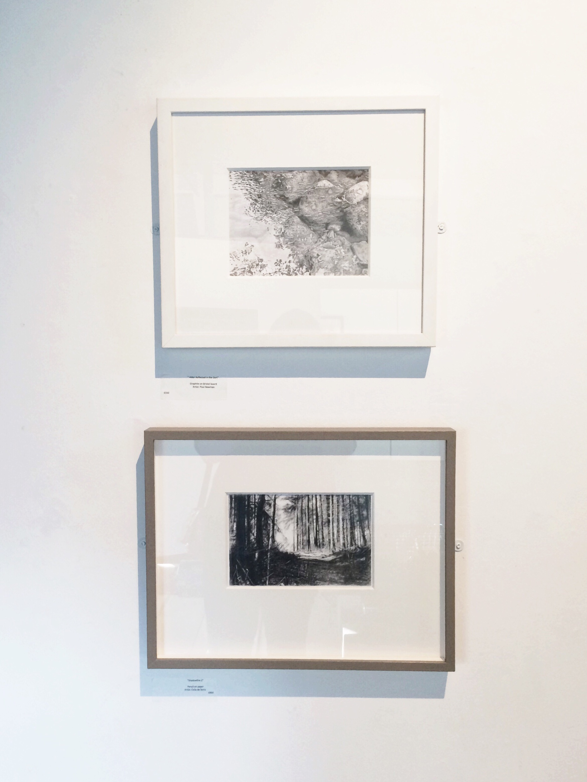 Above: Alders Reflected in the Dart, graphite on board by Paul Newman | Below: Shadowline 2, pencil on paper by Celia de Serra