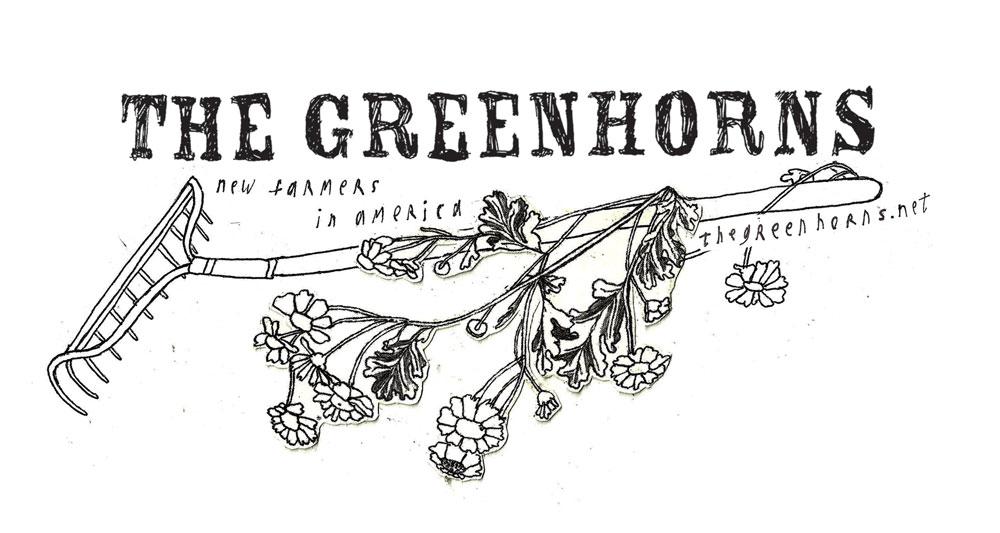 greenhorns.jpg