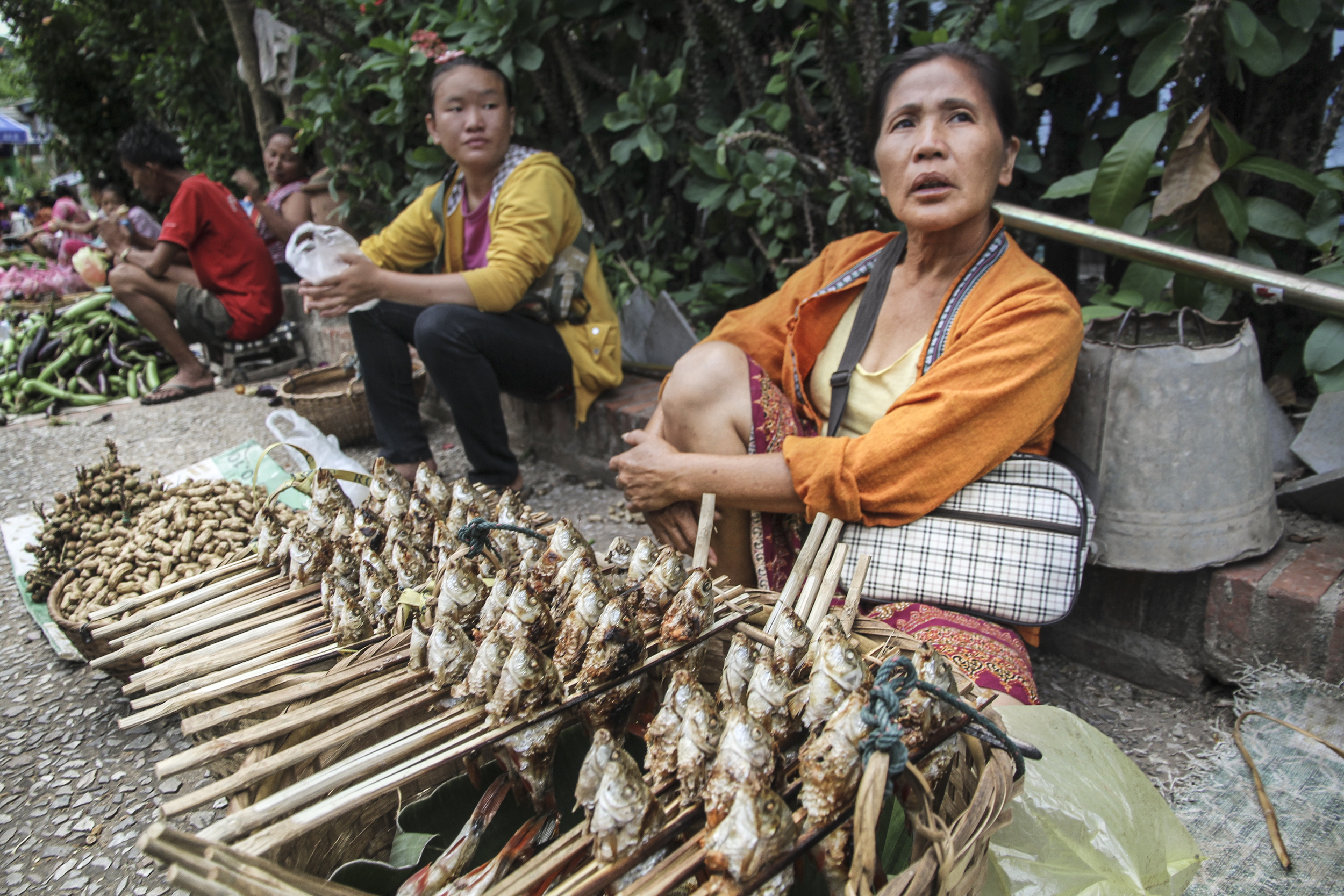 Selling fish.  Phnom Penh, Cambodia