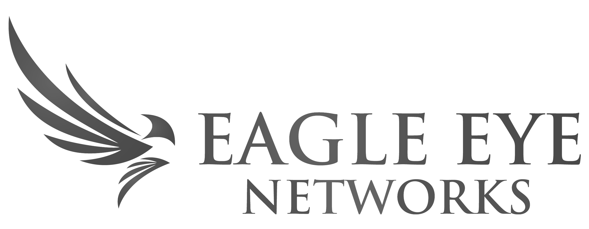 Eagle-Eye-LogoHorizontal-BW.png