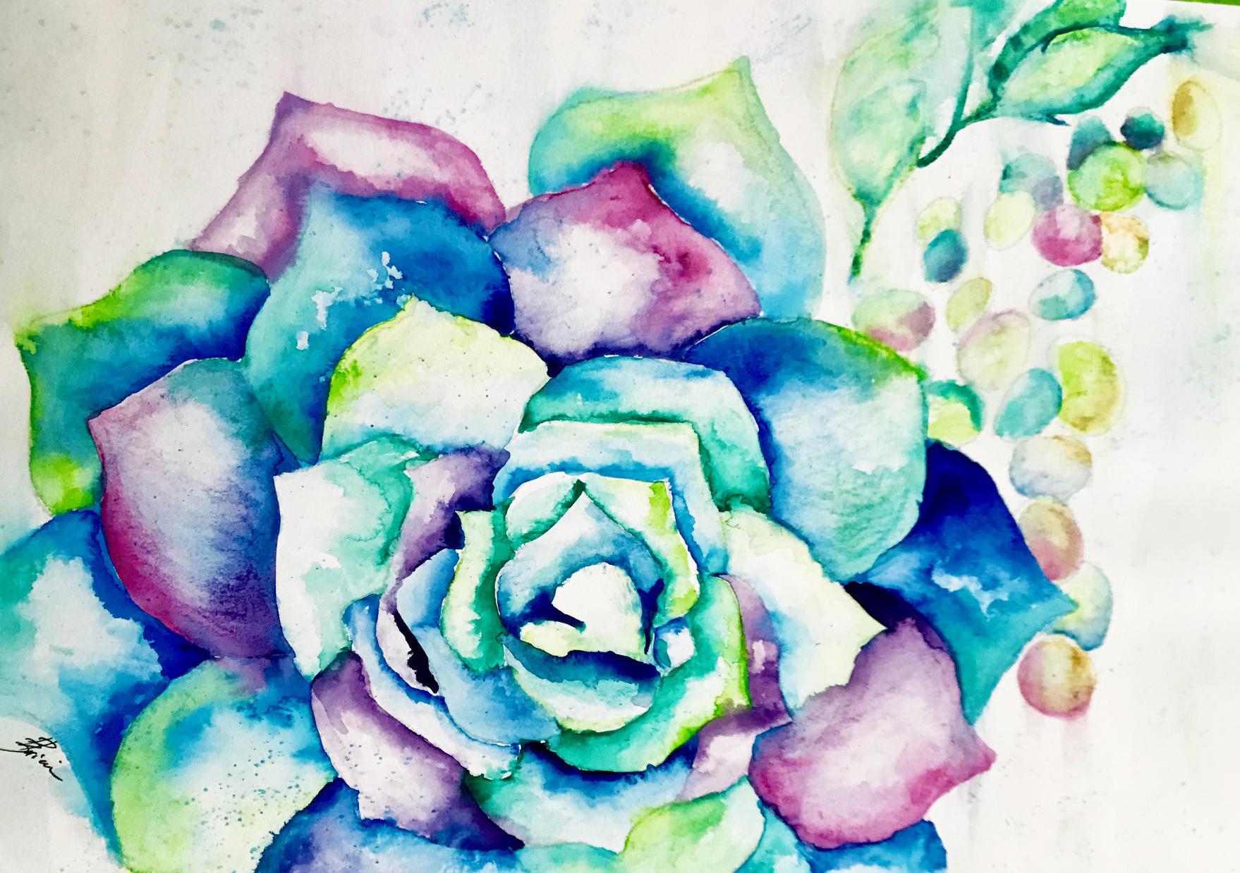 Succulent v1.jpg