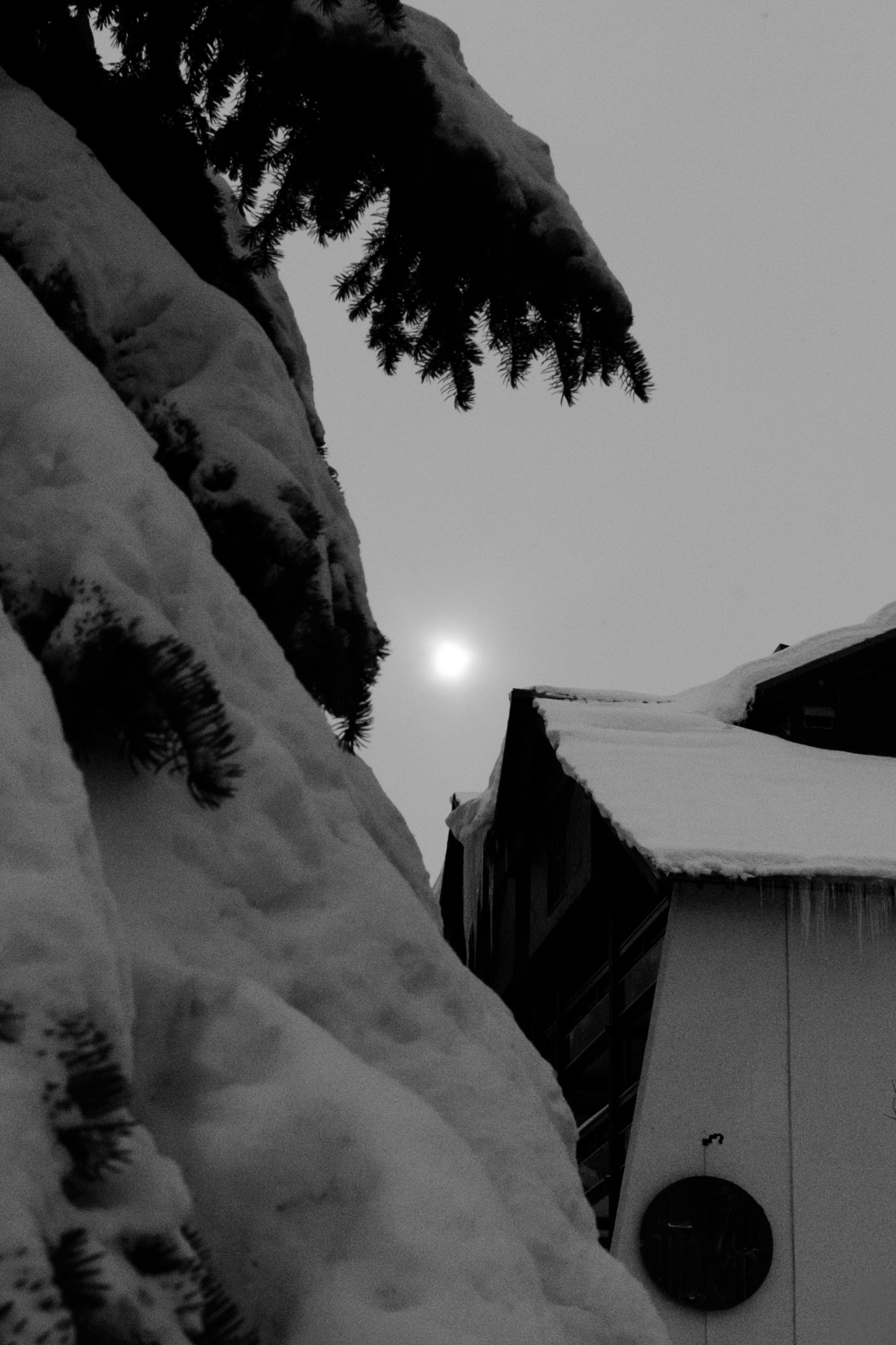 1923-savoie-snow-covered-ski-resort.jpg