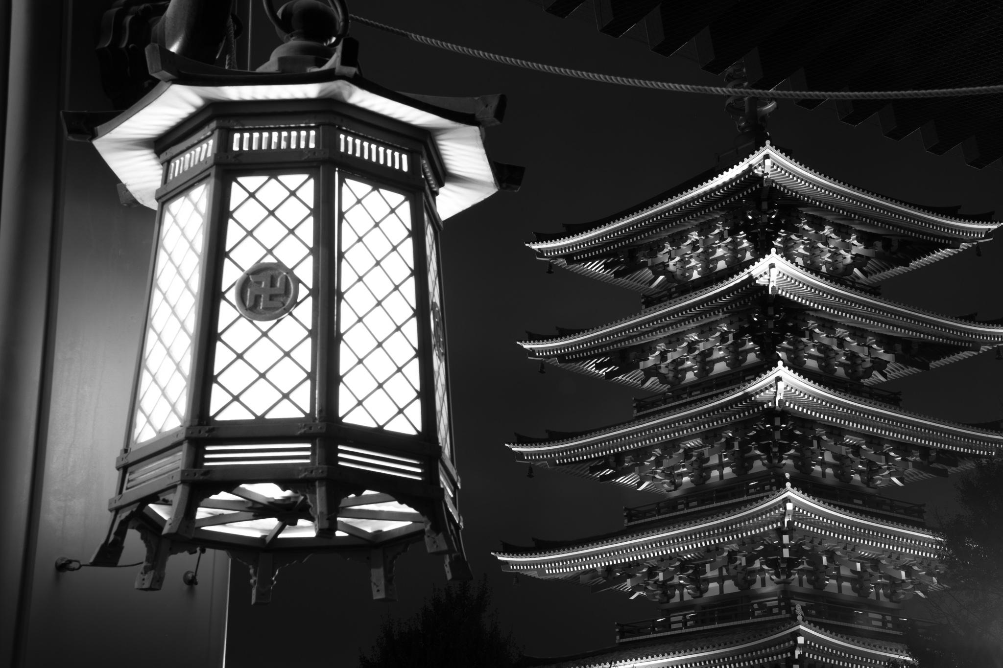 5872-japan-urban-autumn-lights.jpg