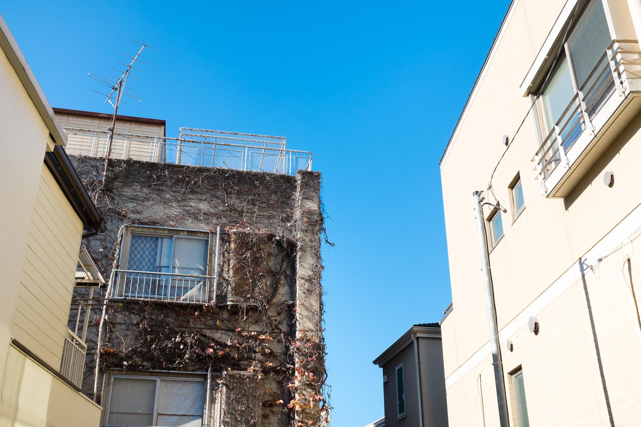 8741-japan-urban-perfect-light.jpg