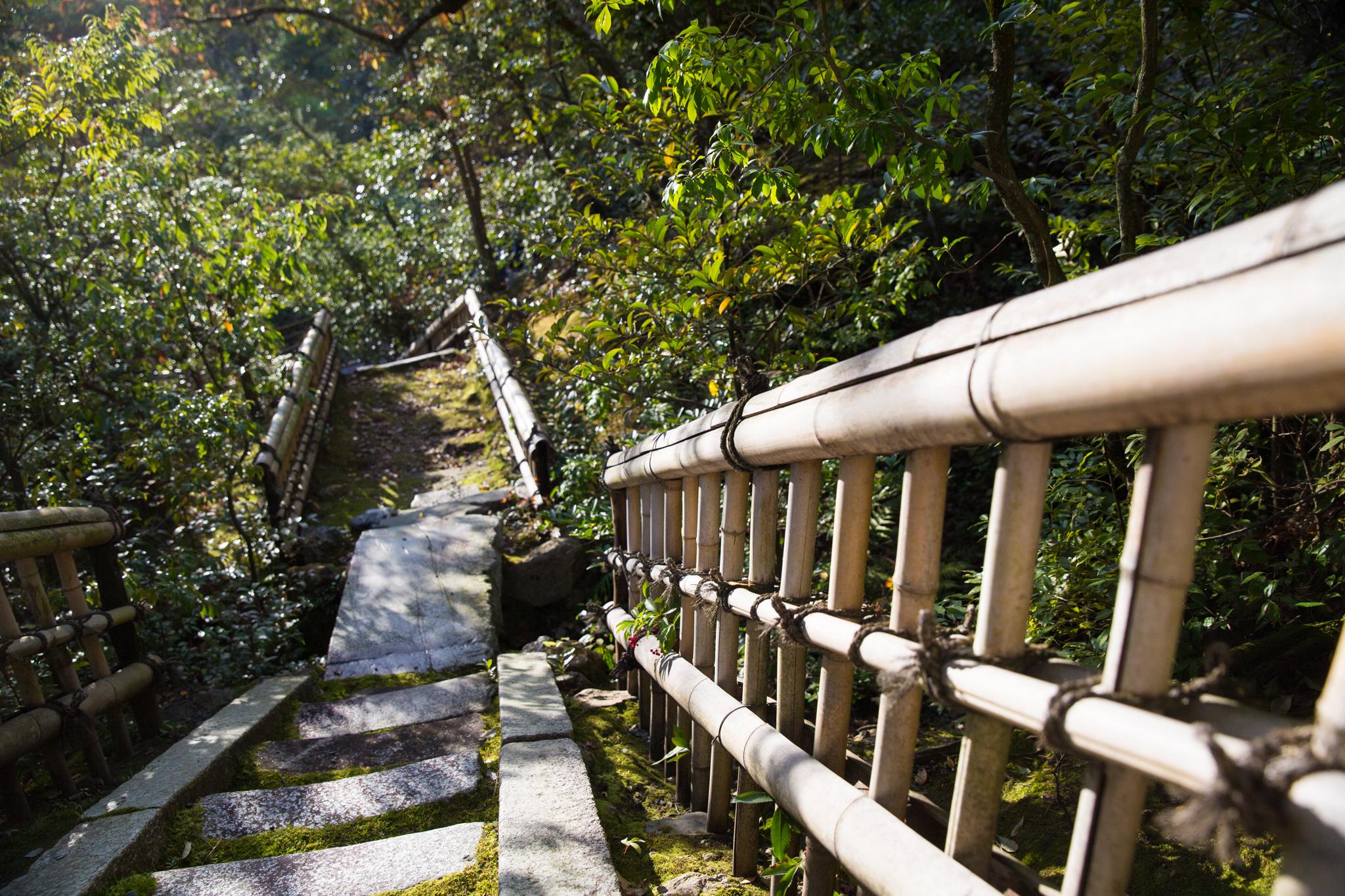 5014-japan-nature-autumn-colors.jpg