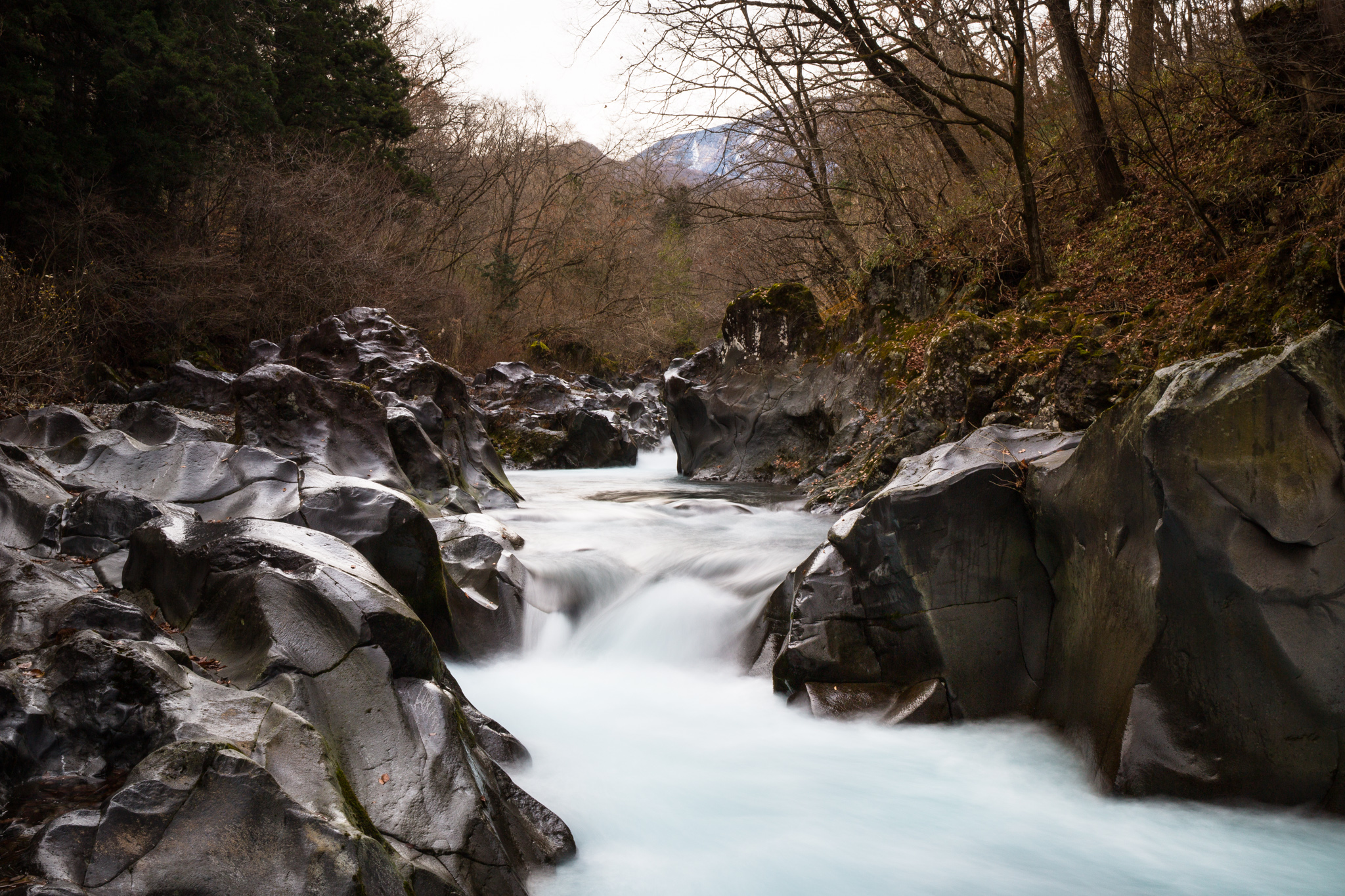 6601-japan-nature-frozen-time.jpg