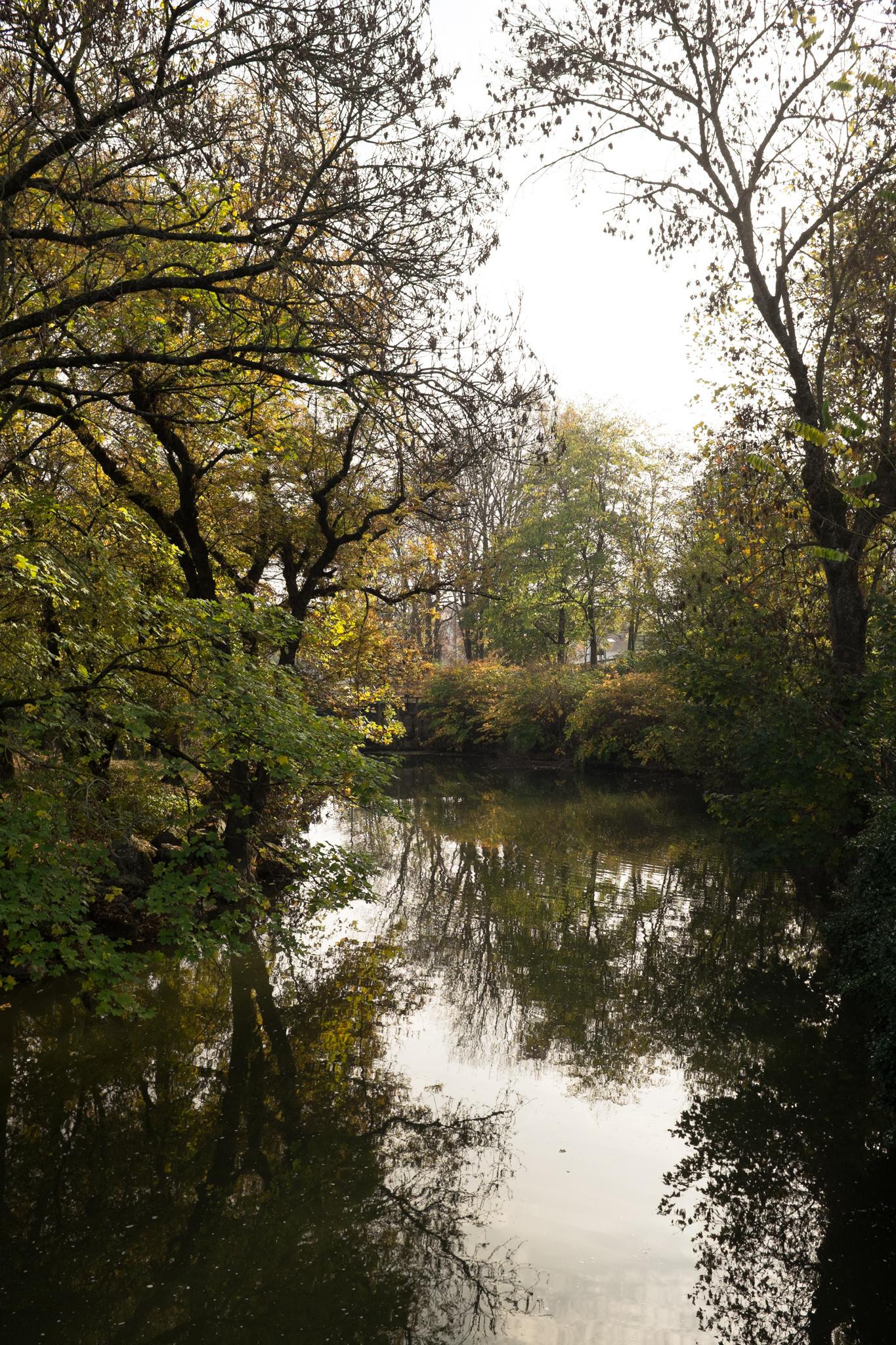 5902-nature-dijon-bourgogne.jpg