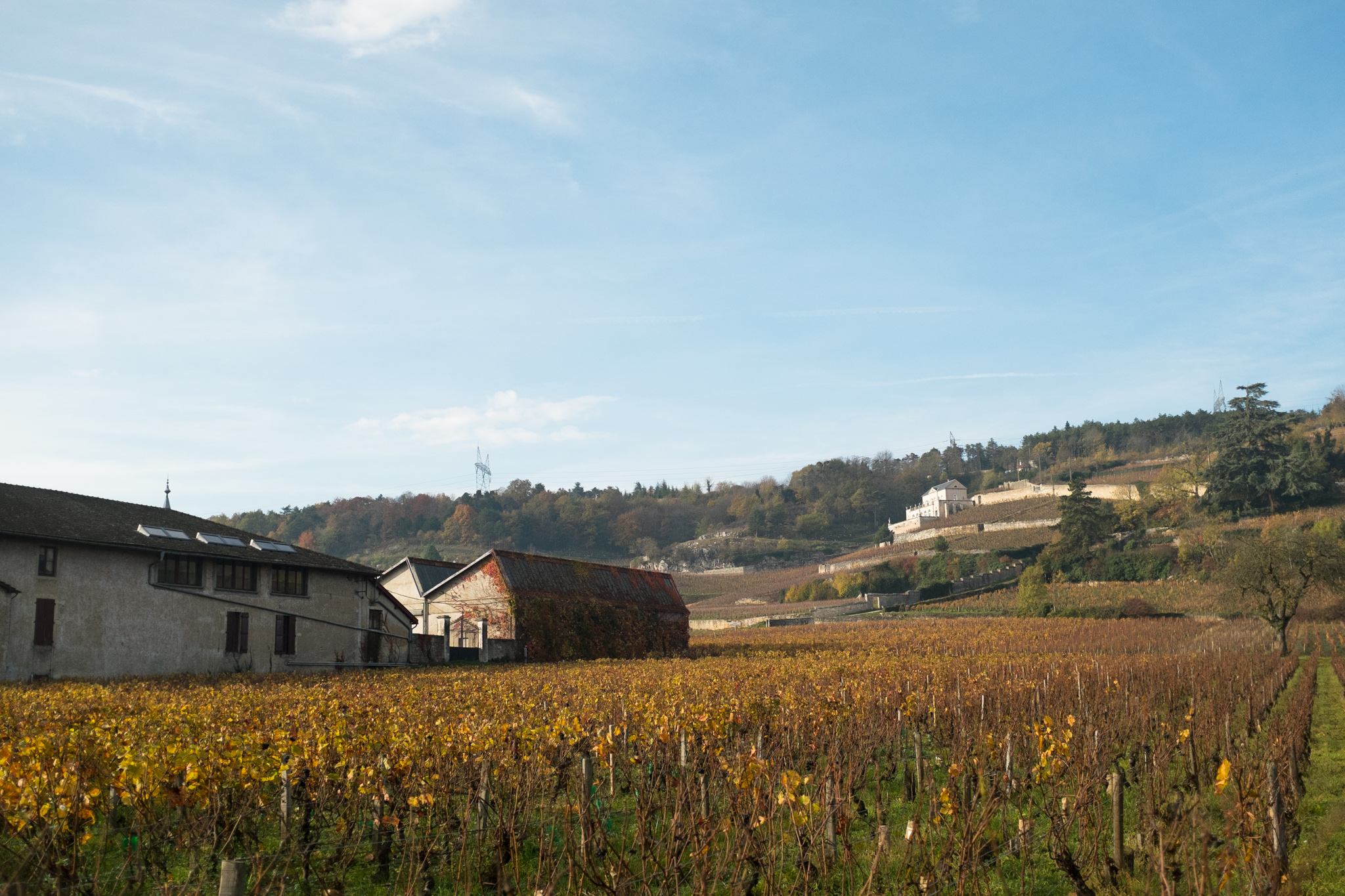 6612-nature-bourgogne-landscape.jpg