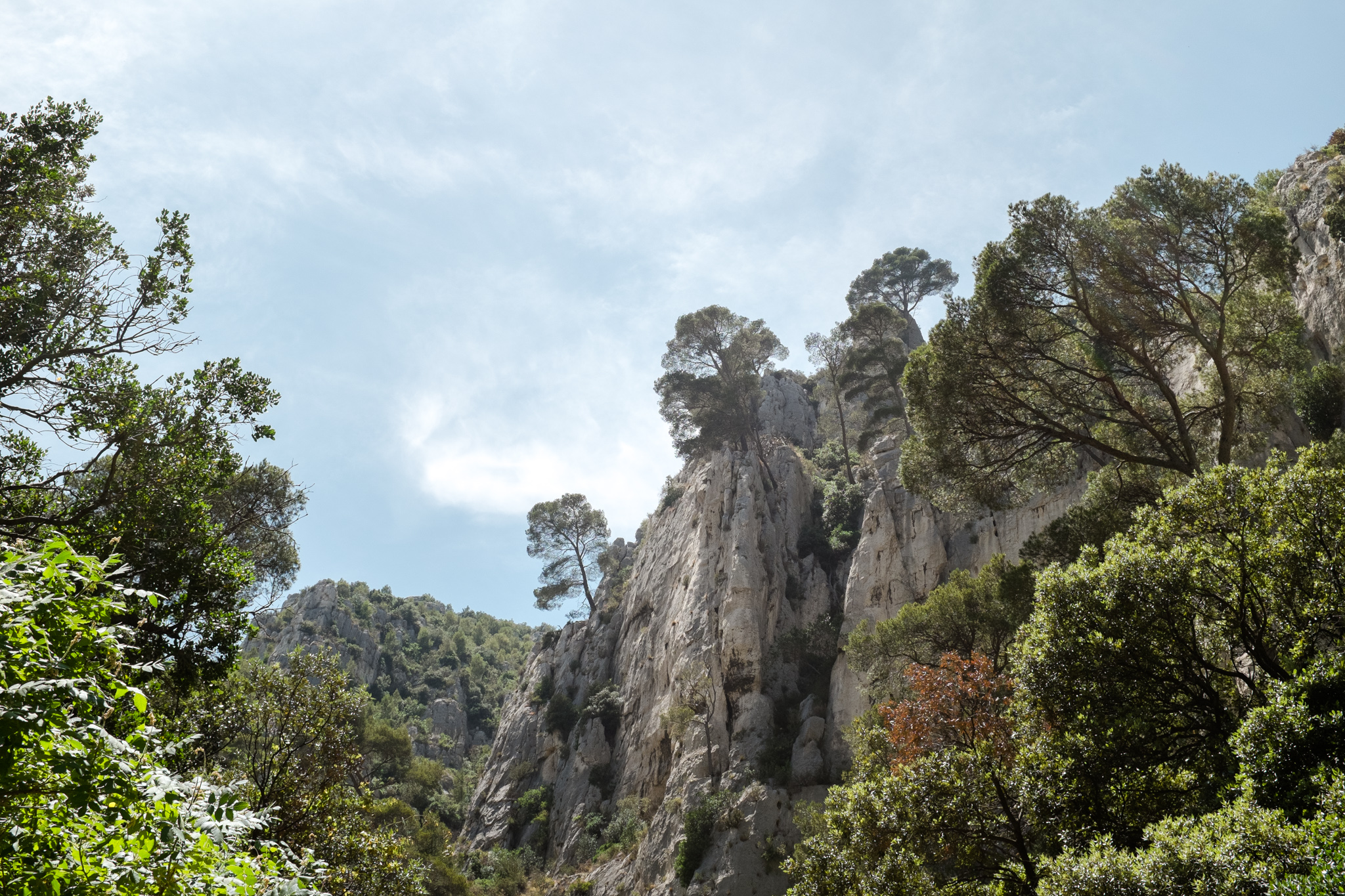 3113-nature-provence-salt-flats.jpg