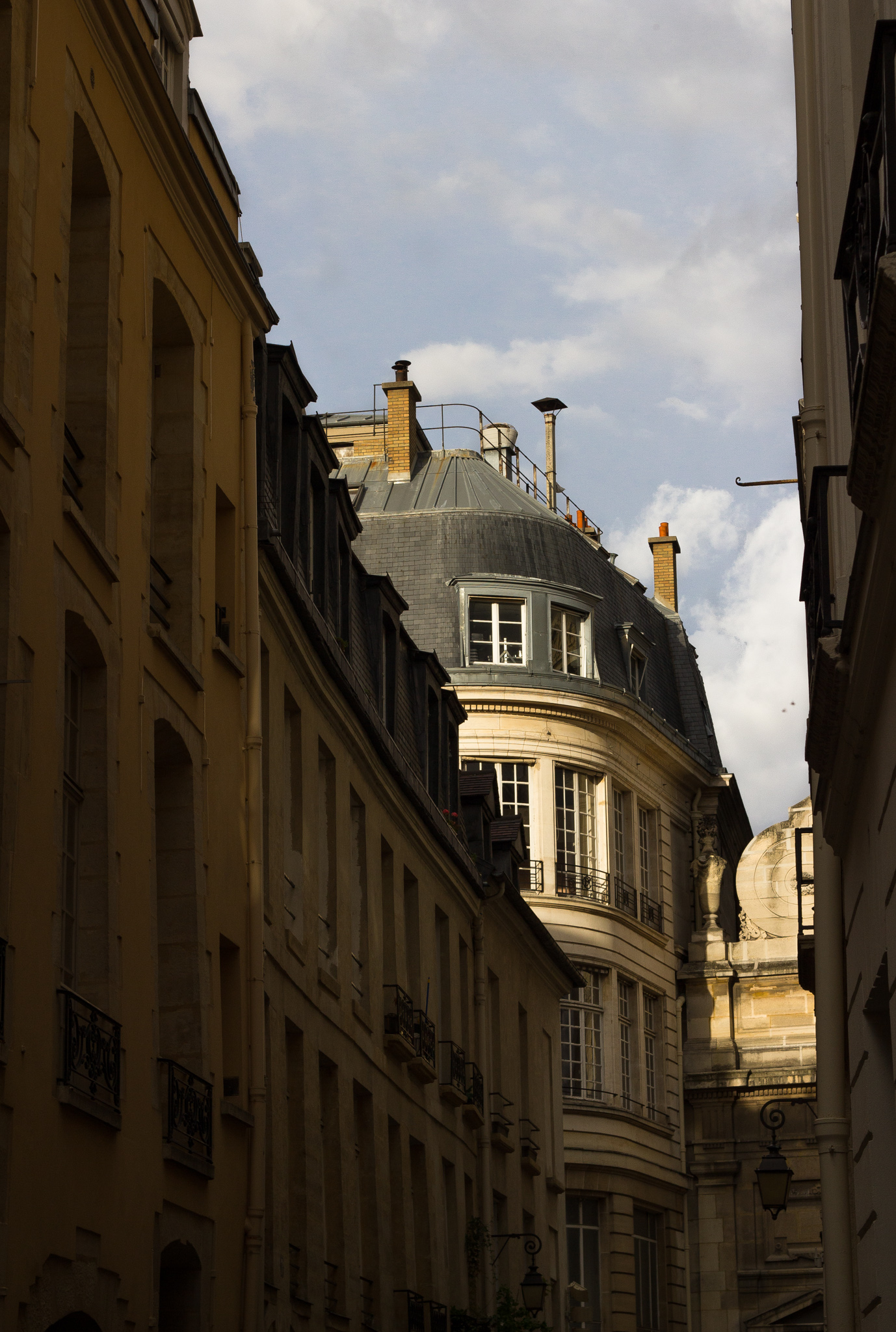 6262-rooftops-of-paris-architecture.jpg