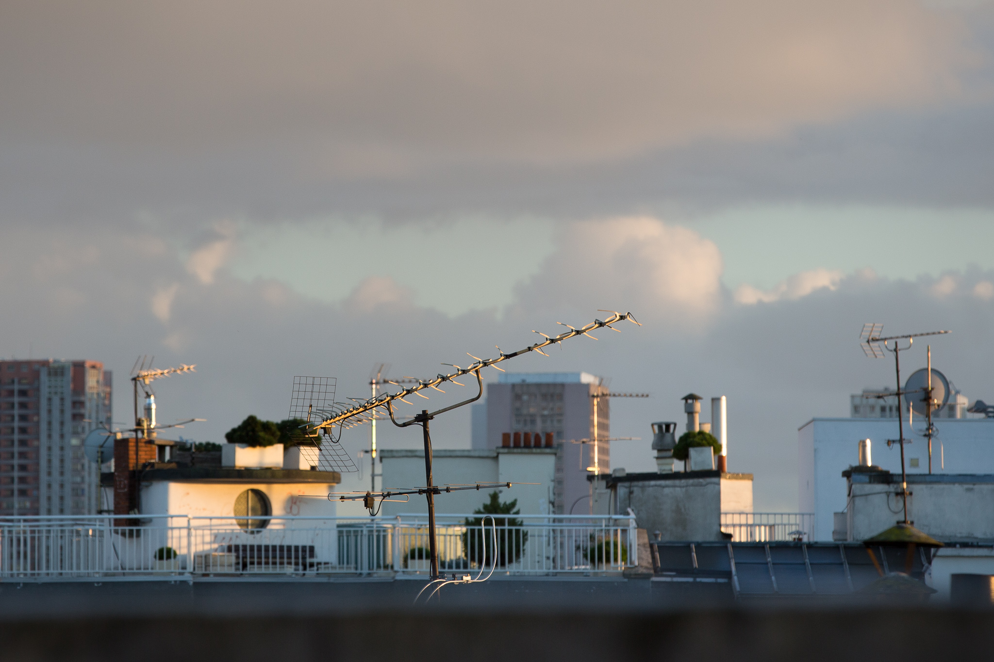 8146-rooftops-of-paris-architecture.jpg