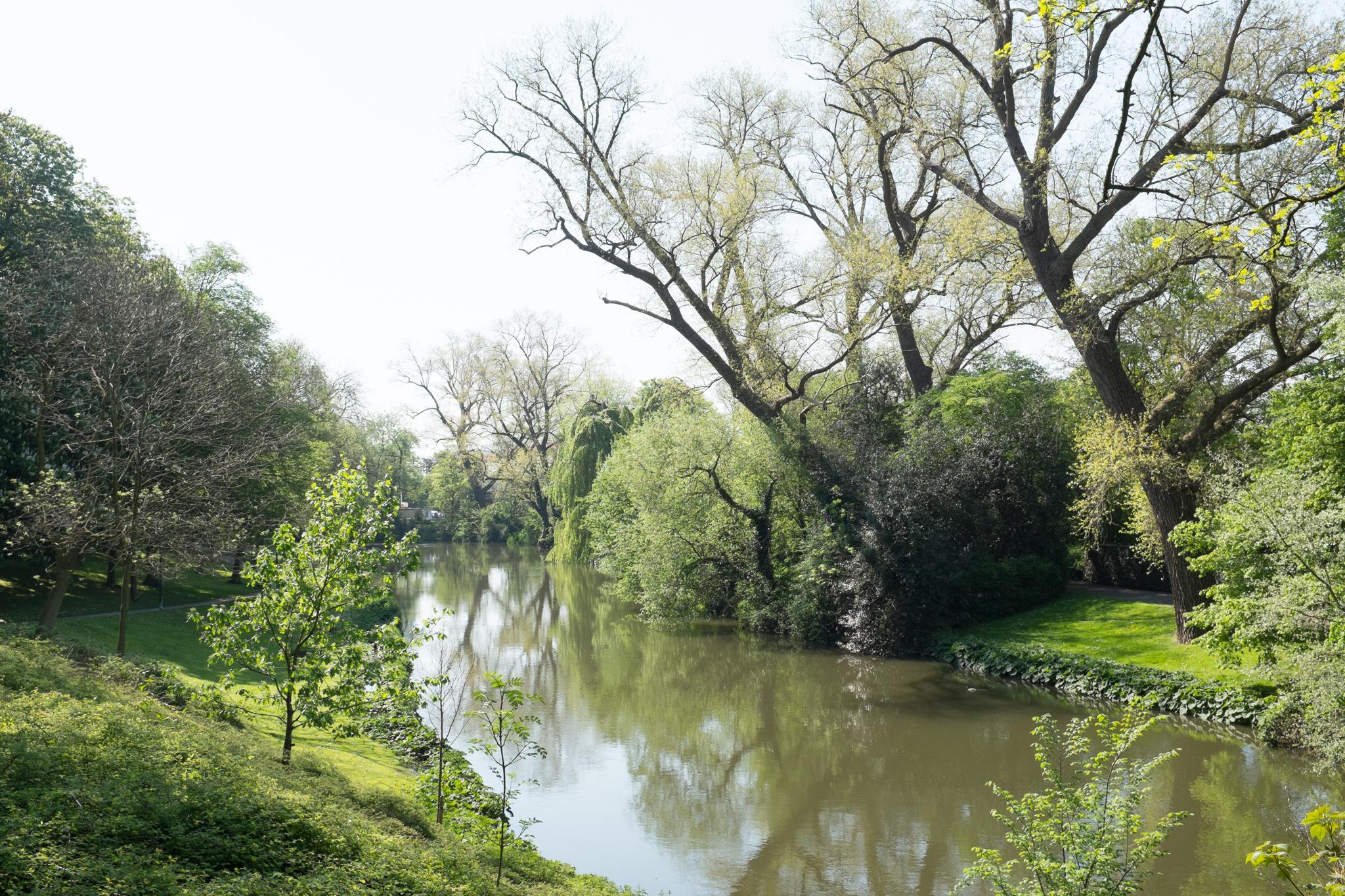 3615-nature-in-belgium.jpg