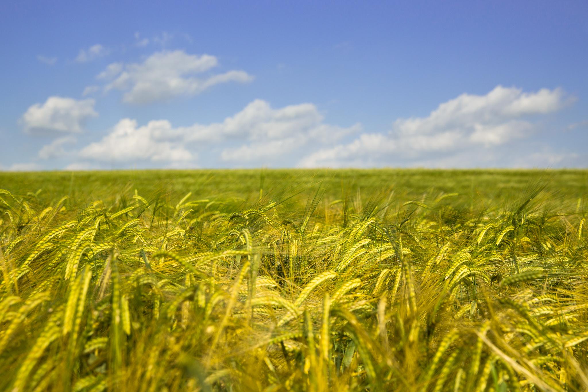 7508-uk-award-winning-landscape-photography.jpg