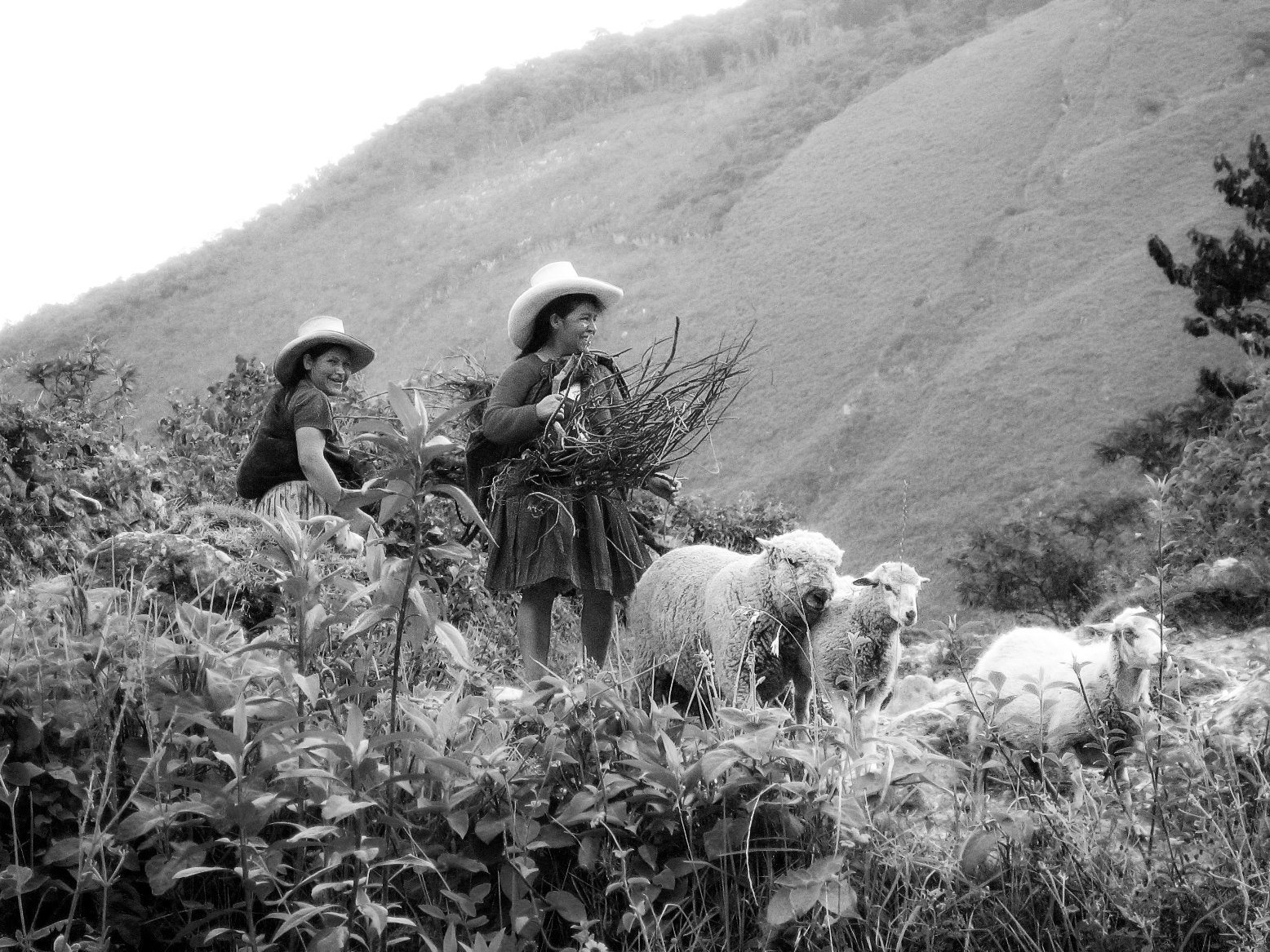 leymebamba_travel-to_most-spectacular-views-6312-bw_peruvian-women-carrying-branches-with-sheep.jpg