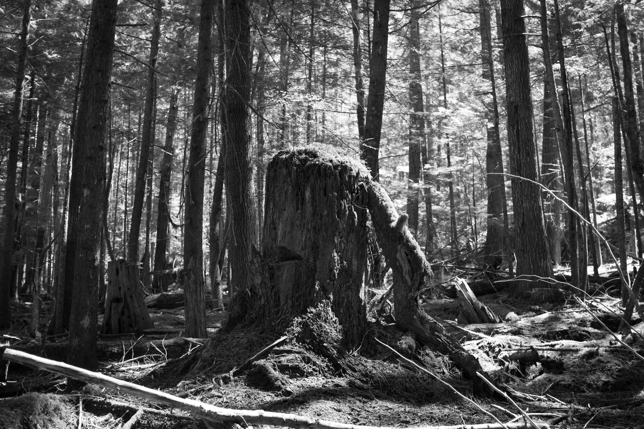 1734-best-canada-nature-spots.jpg