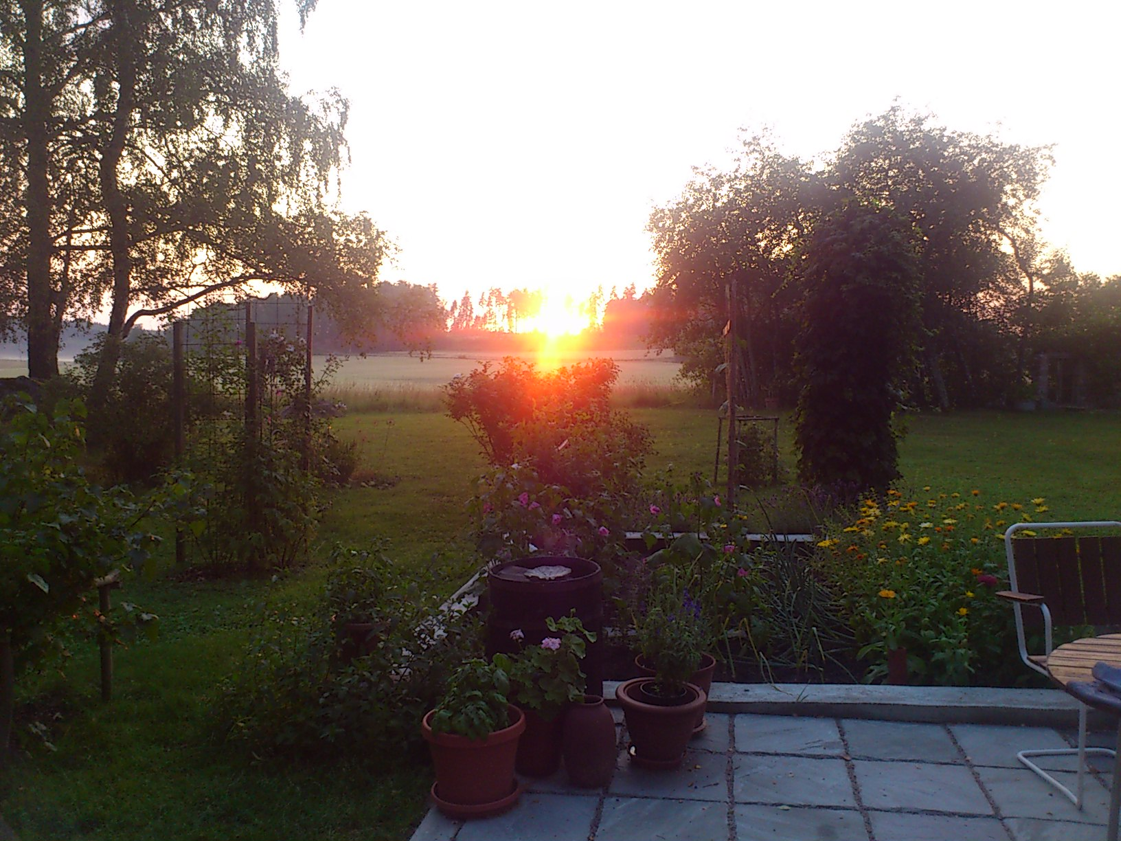 Greeting-the-sun