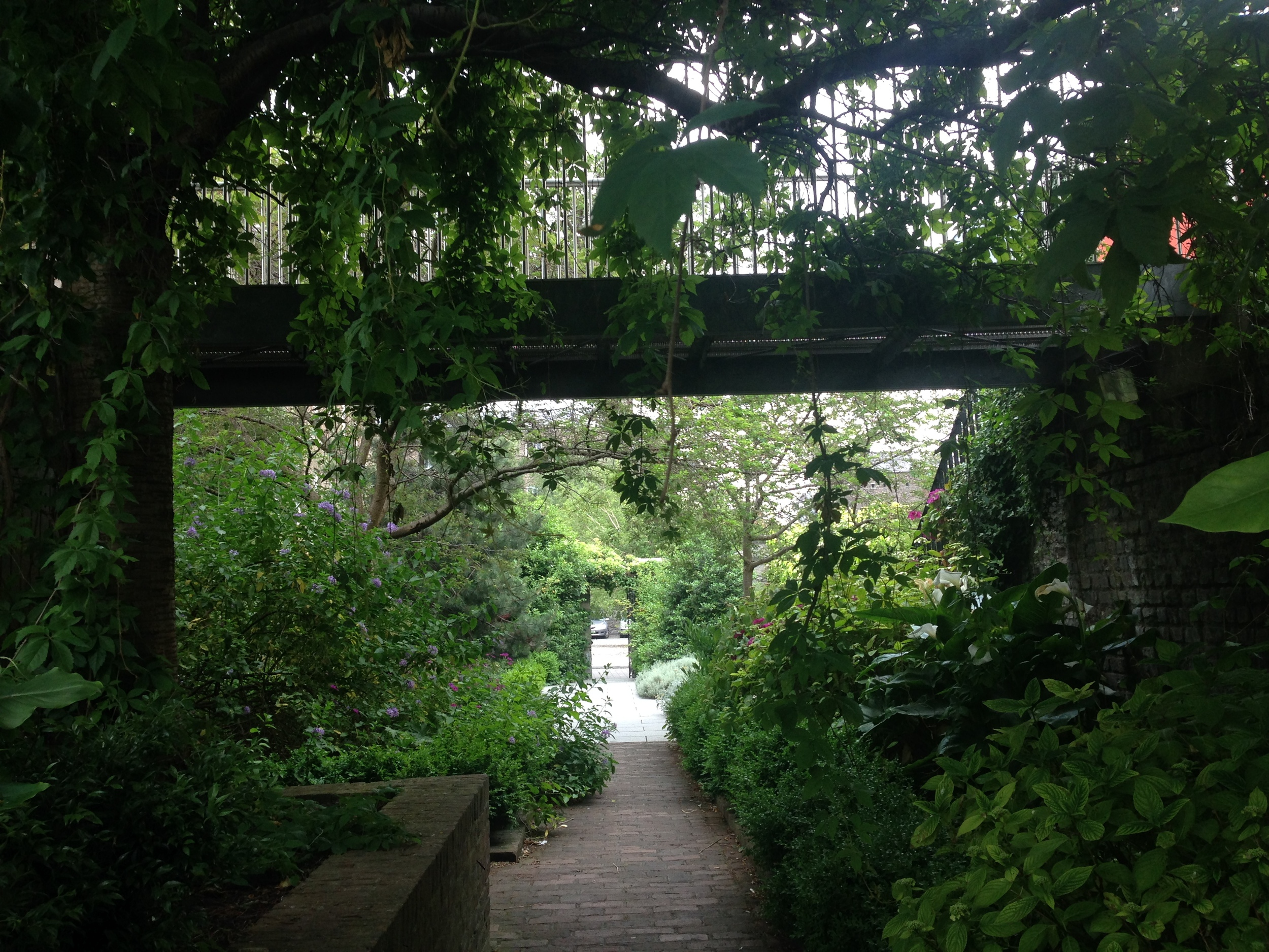 Dubhlinn-garden