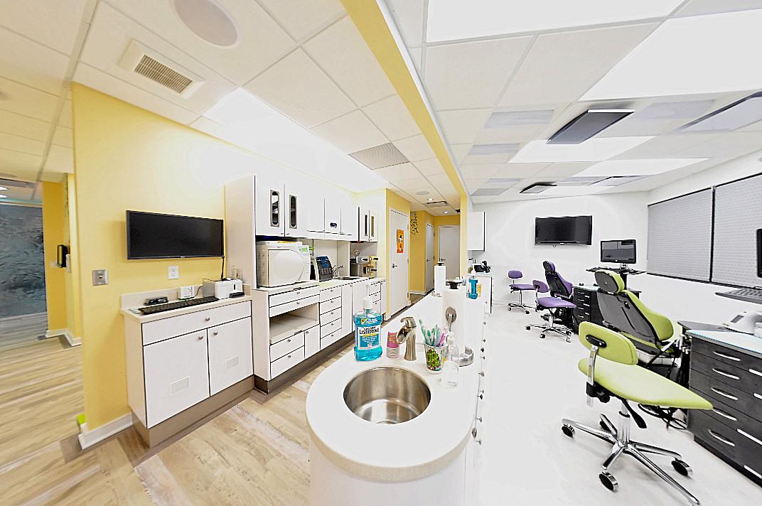 Orthodontic Treatment Area