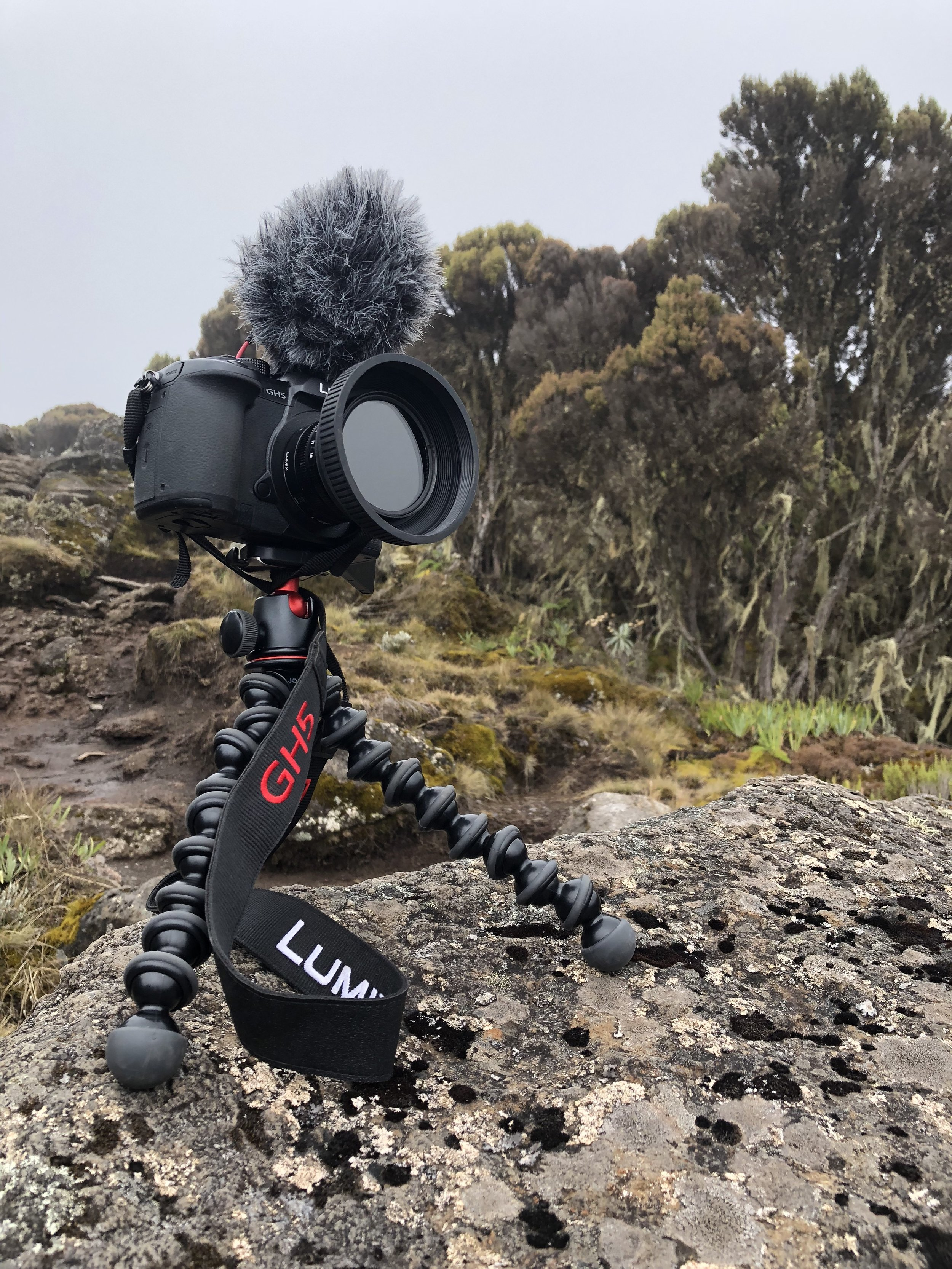 TIMELAPSE. GEAR: PANASONIC GH5 WITH 15mm leica Lens