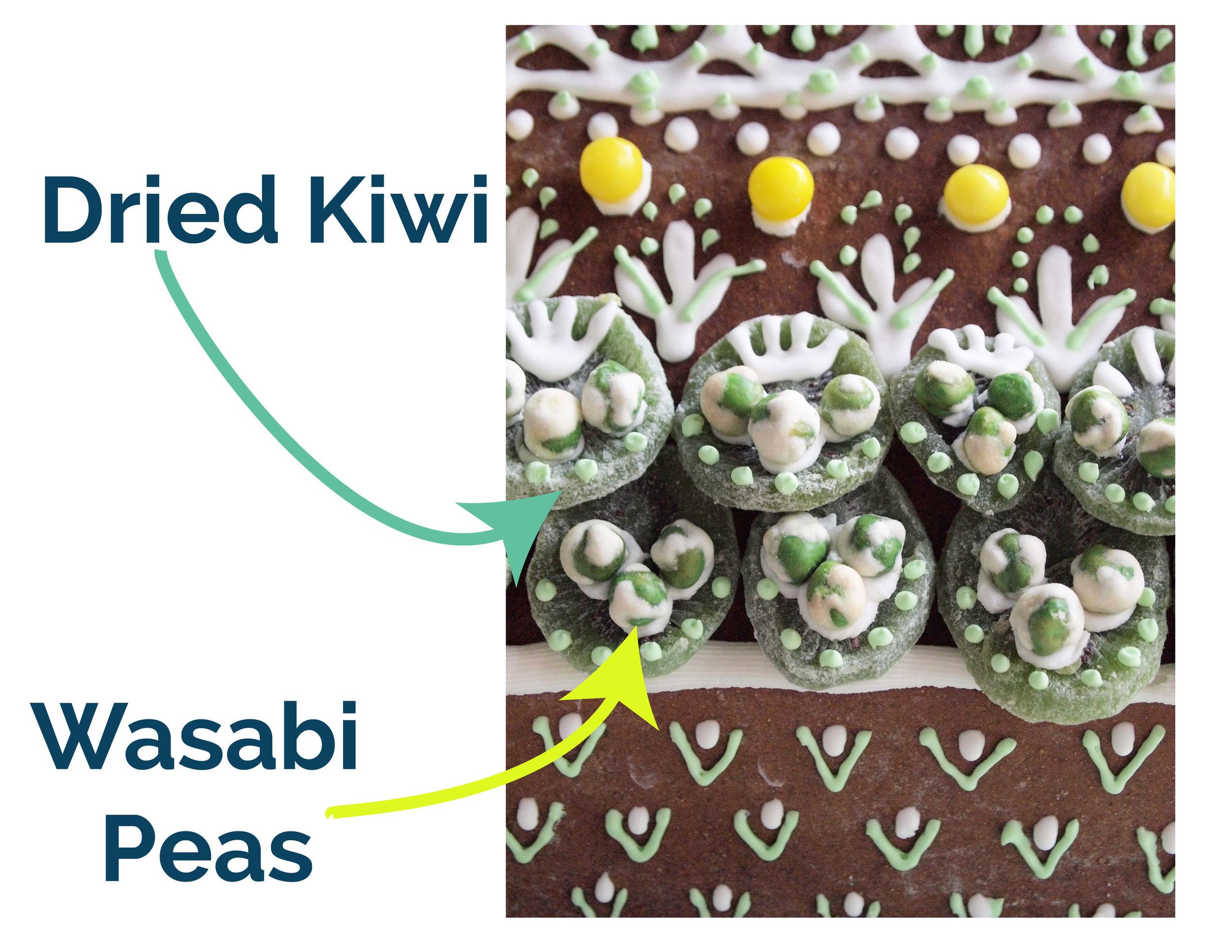 kiwi and wasabi graphic test-01.jpg