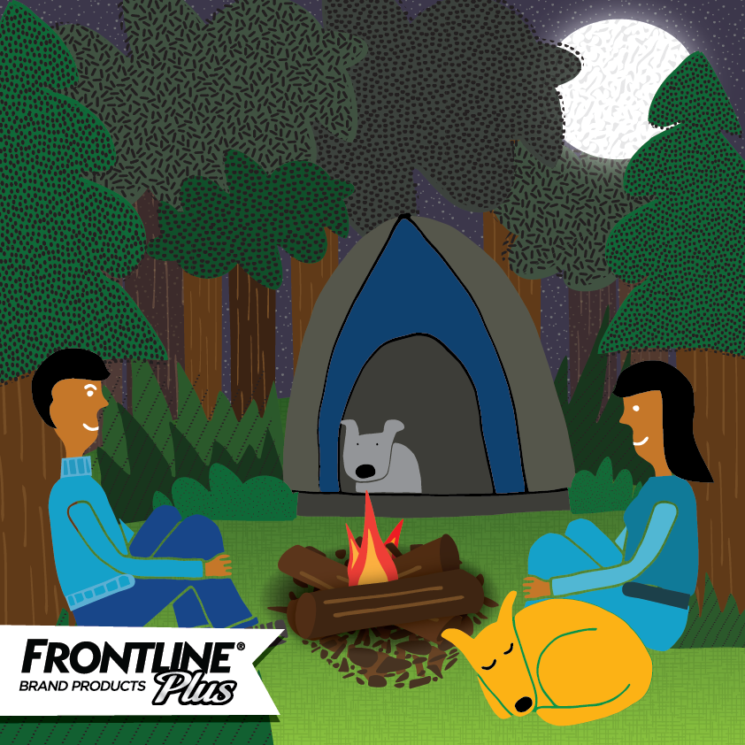 Frontline_camping-01.png