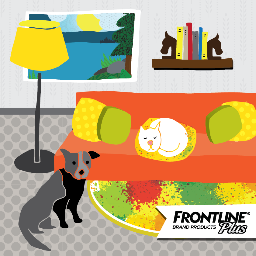 Frontline_home-01.png