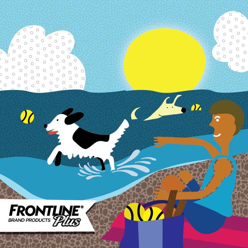 Frontline_beach-01.png