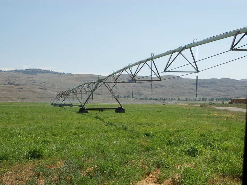 14. AVR has excellent, verified water rights you can find with enough water to irrigate over 1000 acres of viney.jpg